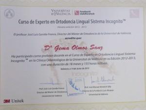 Colaborador Docente en Máster de Ortodoncia Lingual Incógnito de Valencia