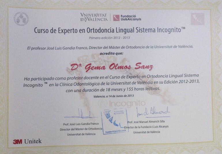 ortodoncia lingual master